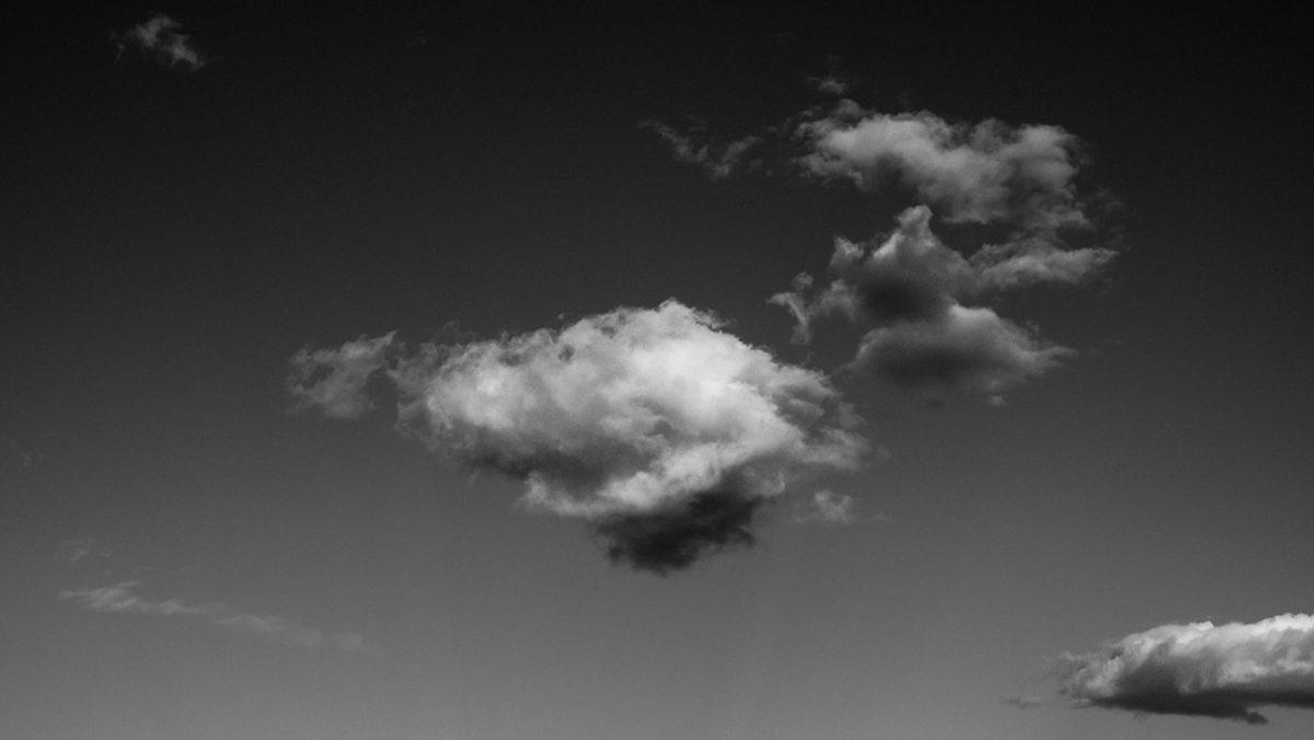 victoria-munoz-photo-nature-023